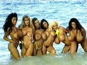 Fantasy Beach - Tawny Peaks, Linsey Dawn McKenzie, Tiffany Towers free