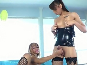 Blonde and brunette shemales giving each other a sweet handjob as they lick...